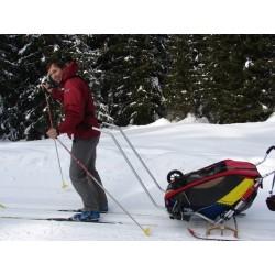 Skis adaptables sur poussette à tracter